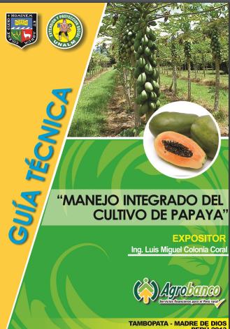 MIP EN EL CULTIVO DE PAPAYA. PDF GRATIS
