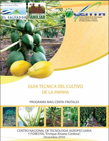 Guia del cultivo de papaya.pdf