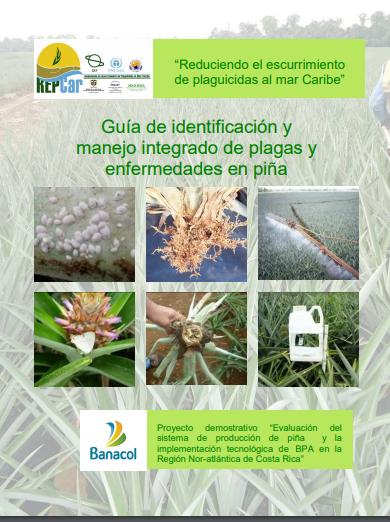 Guia de identificacion de plagas y enfermedades de la piña.pdf