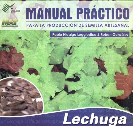 ® Manual de producción de semilla de lechuga (Lactuca Sativa). gratis