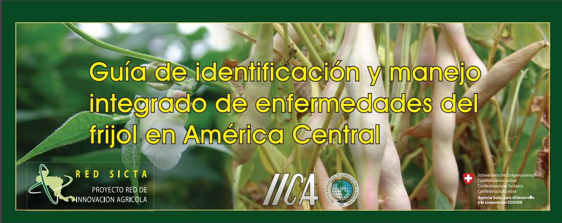 GUÍA DE IDENTIFICACIÓN, MIP DE ENFERMEDADES DEL FRIJOL.PDF