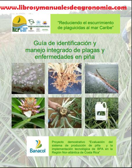 Guía de identificación y manejo integrado de plagas y enfermedades en piña