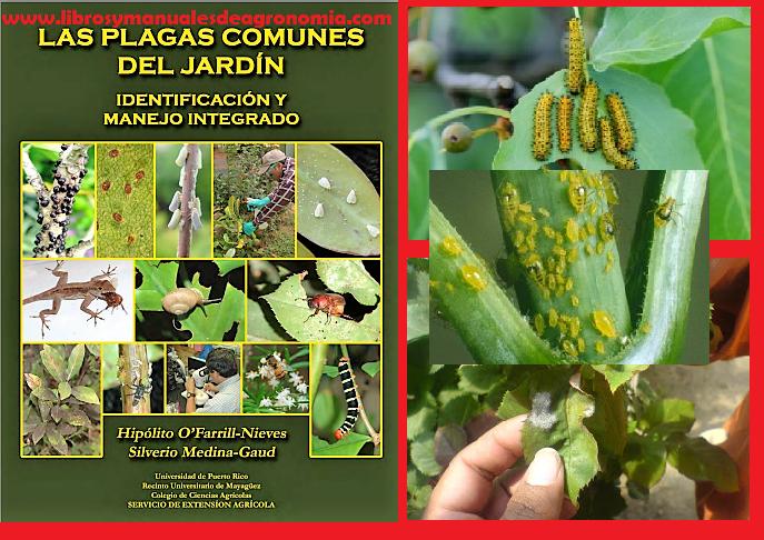Manual de PLAGAS mas COMUNES del JARDIN. pdf gratis