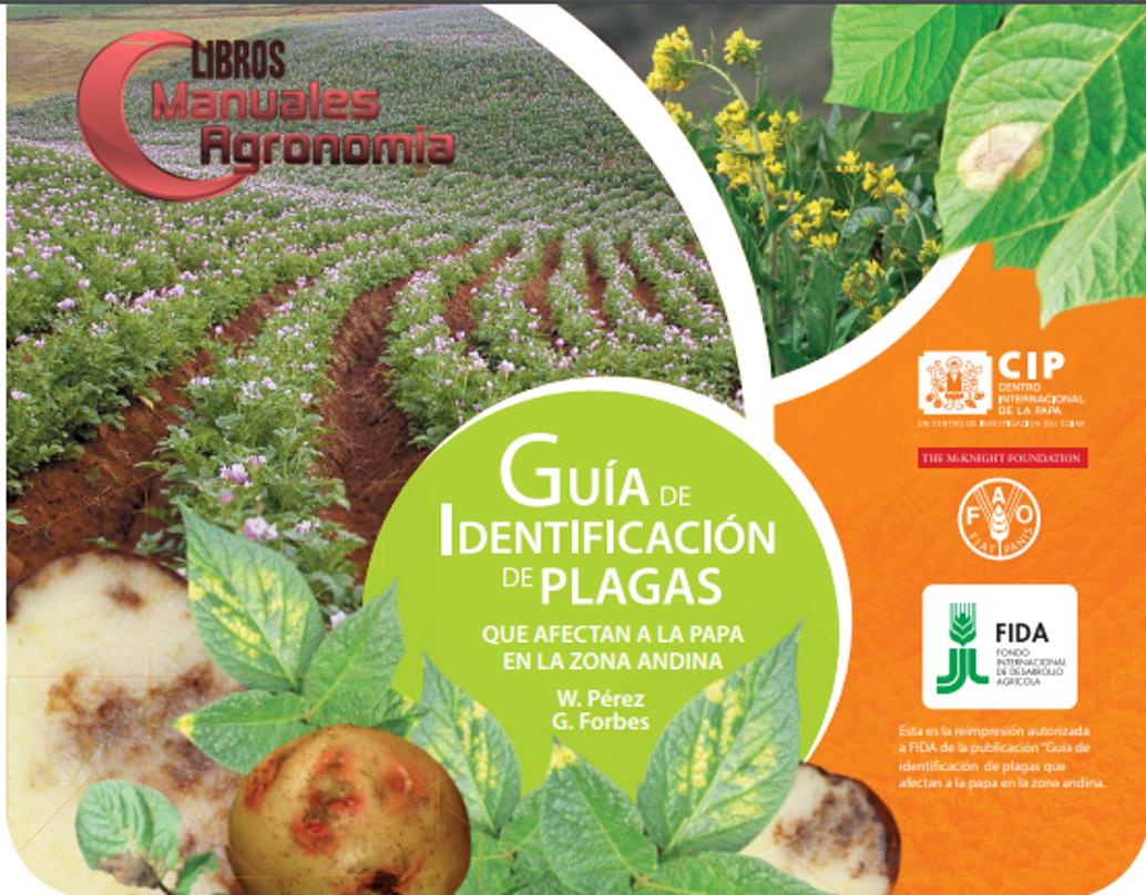 Manual de identificacion de PLAGAS de la papa. pdf GRATIS