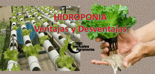 Que es HIDROPONIA, Origen, Ventajas y Desventajas, hidroponia casera. pdf