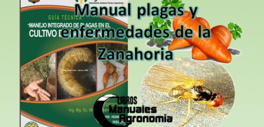 Manual de plagas y enfermedades del CULTIVO DE ZANAHORIA. libros gratis pdf
