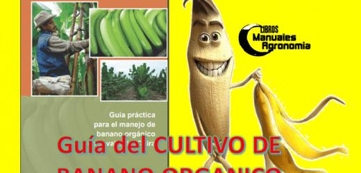 Manual del cultivo de BANANO ORGANICO. libros gratis de agronomia pdf