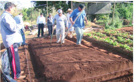 MANUAL DE PREPARACIÓN DE COMPOST Y BIOL. GRATIS